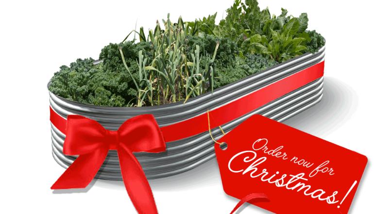 A Gift Idea For Christmas